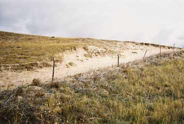 Open_sand_in_the_sandhills_10240613